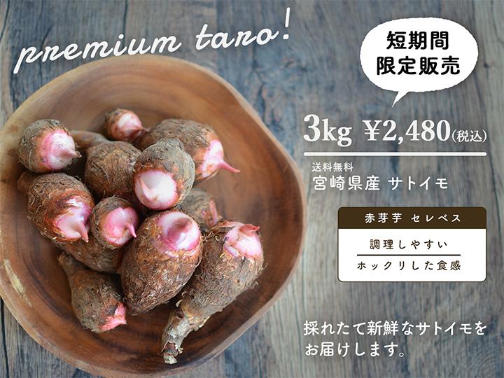 サトイモ、赤芽芋、セレベス、3kg