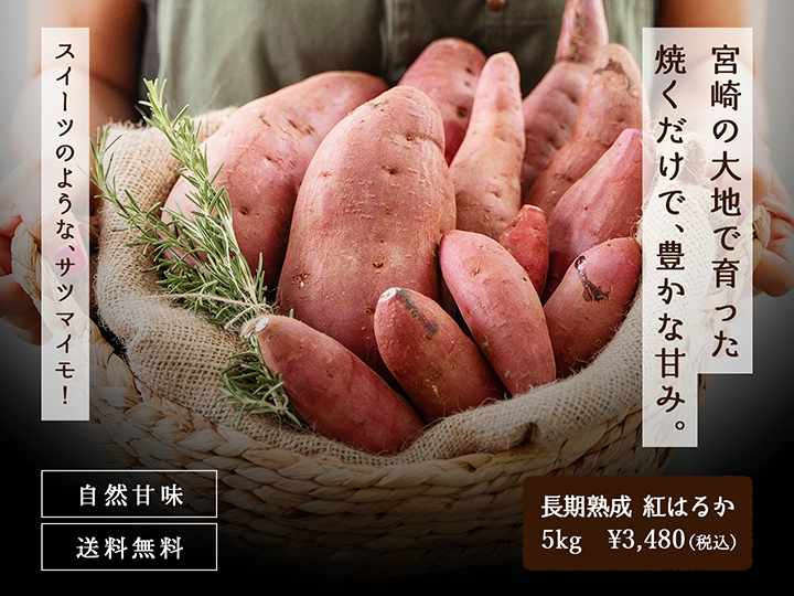 サツマイモ、紅はるか、5kg