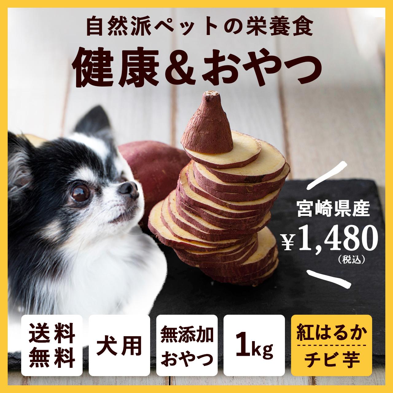 ペットのおやつ さつまいも 紅はるか 1kg 宮崎県産 熟成サツマイモ 生芋