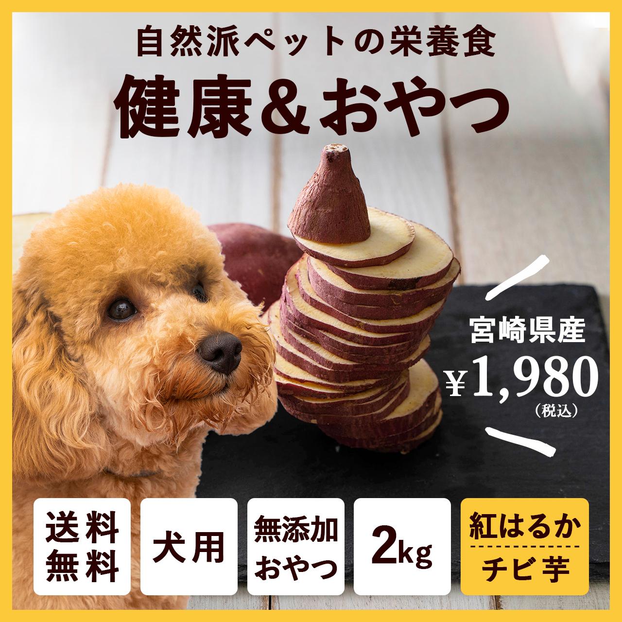 ペットのおやつ さつまいも 紅はるか 2kg 宮崎県産 熟成サツマイモ 生芋