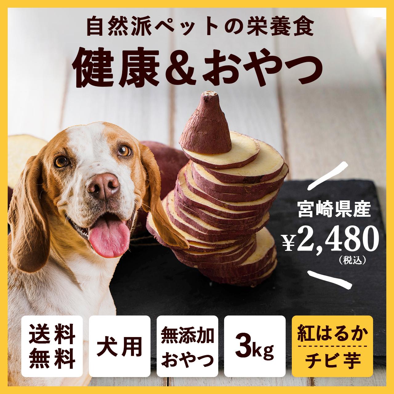 ペットのおやつ さつまいも 紅はるか 3kg 宮崎県産 熟成サツマイモ 生芋